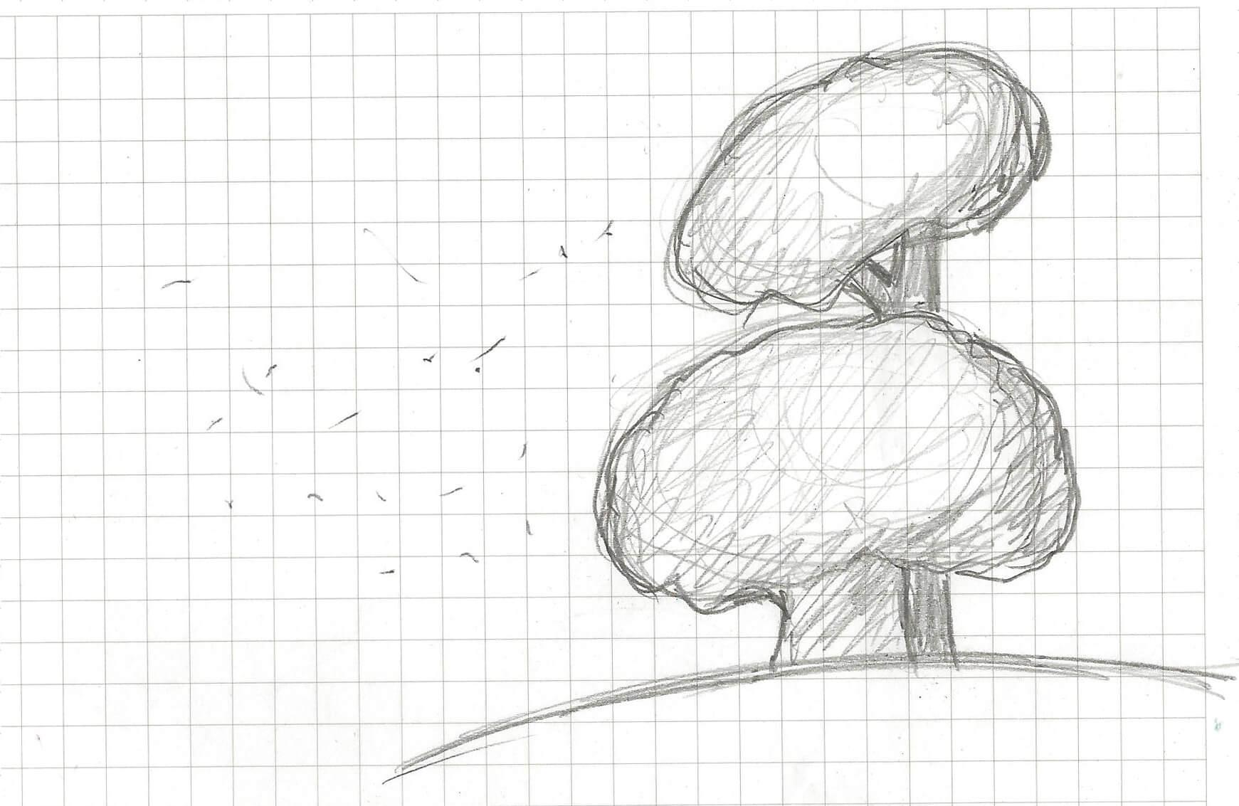 Nuestra inspiración: pino y encina, árboles base del decálogo y de Ilexina