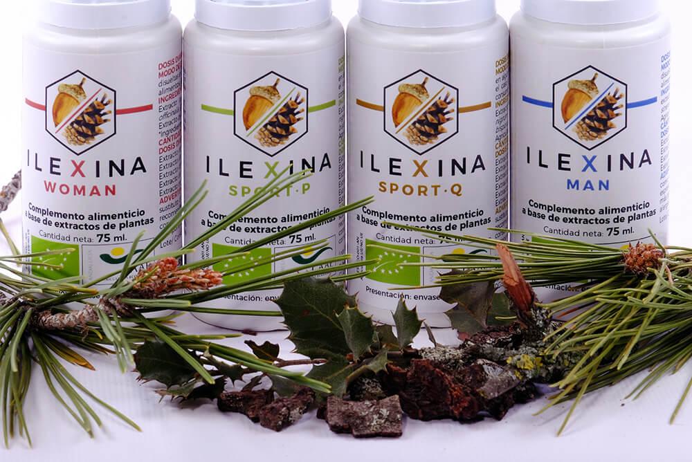 Las 4 Ilexinas - adaptógenos y nootópicos